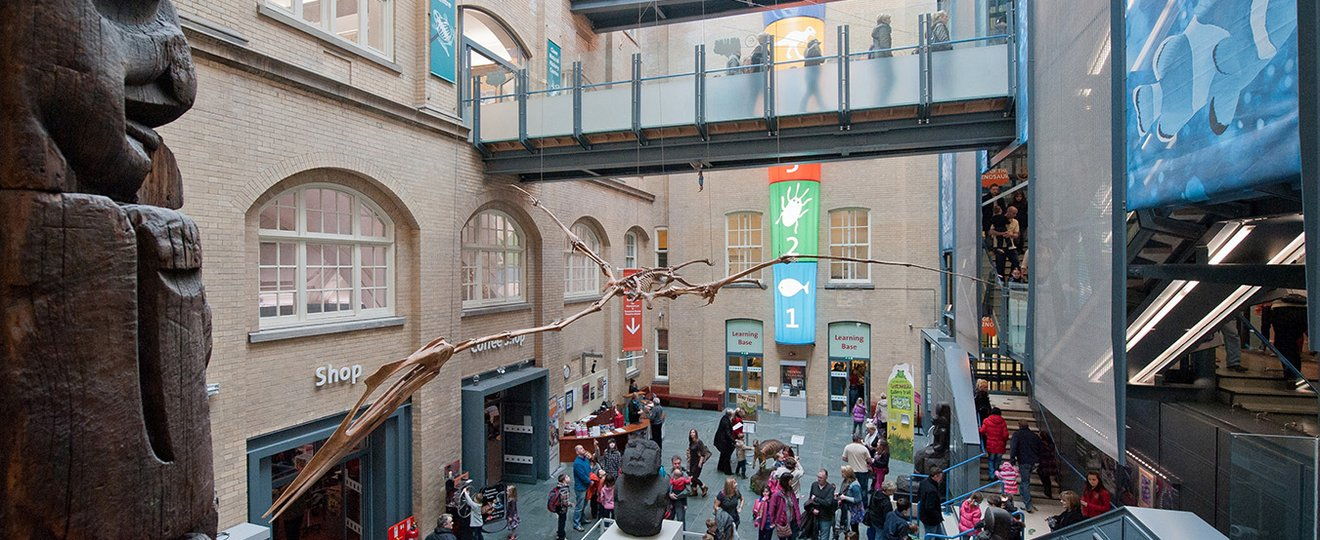 The atrium at the world museum in Liverpool.